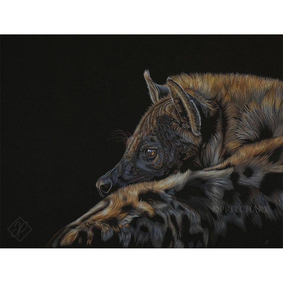 A Matriarch's Twilight - Preview image  British Wildlife Art