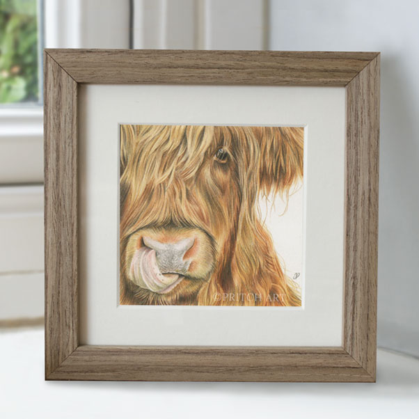Highland Cow - Preview image  British Wildlife Art