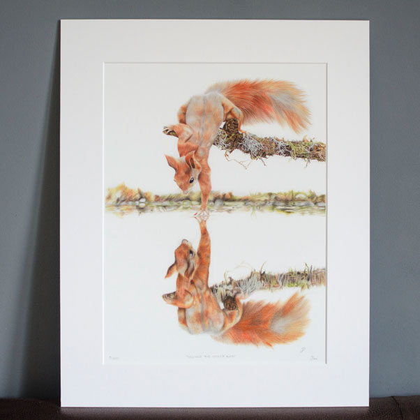 British Wildlife - Touching the Looking Glass mounted print