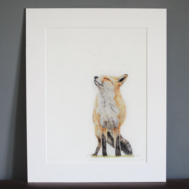 Snowfall mounted print - Preview image  British Wildlife Art