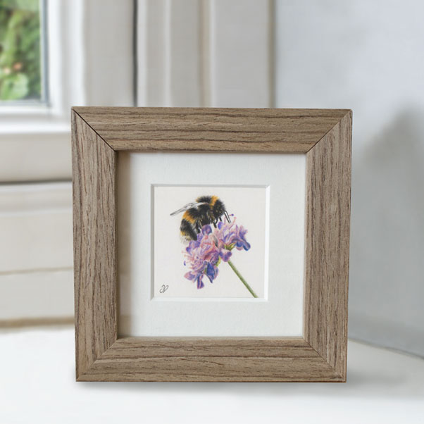 Bumblebee - Preview image  British Wildlife Art