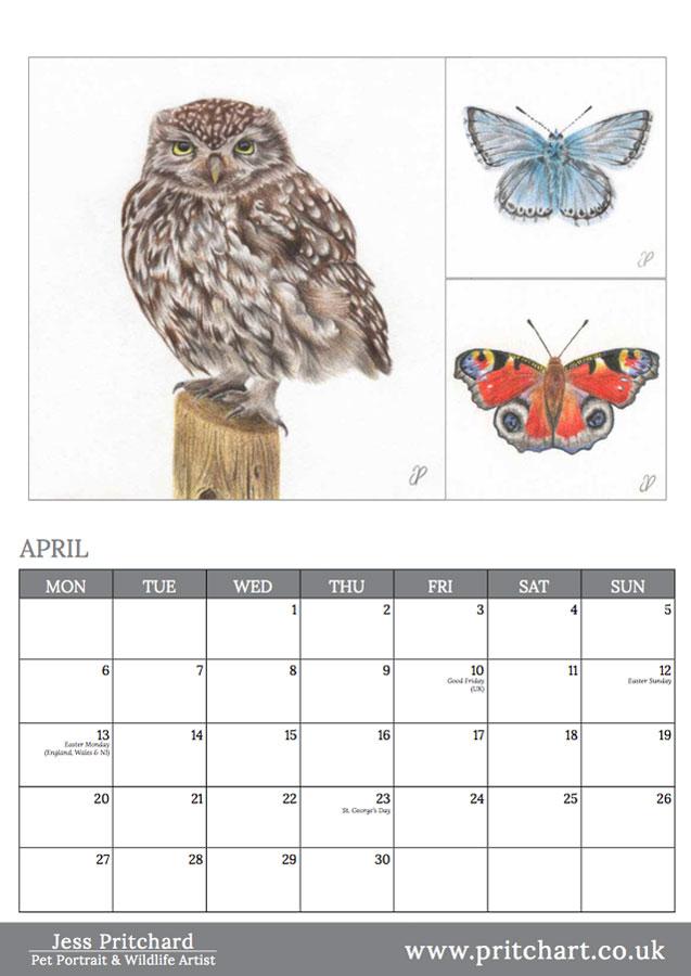 2020 British Wildlife Wall Calendar thumbnail 2
