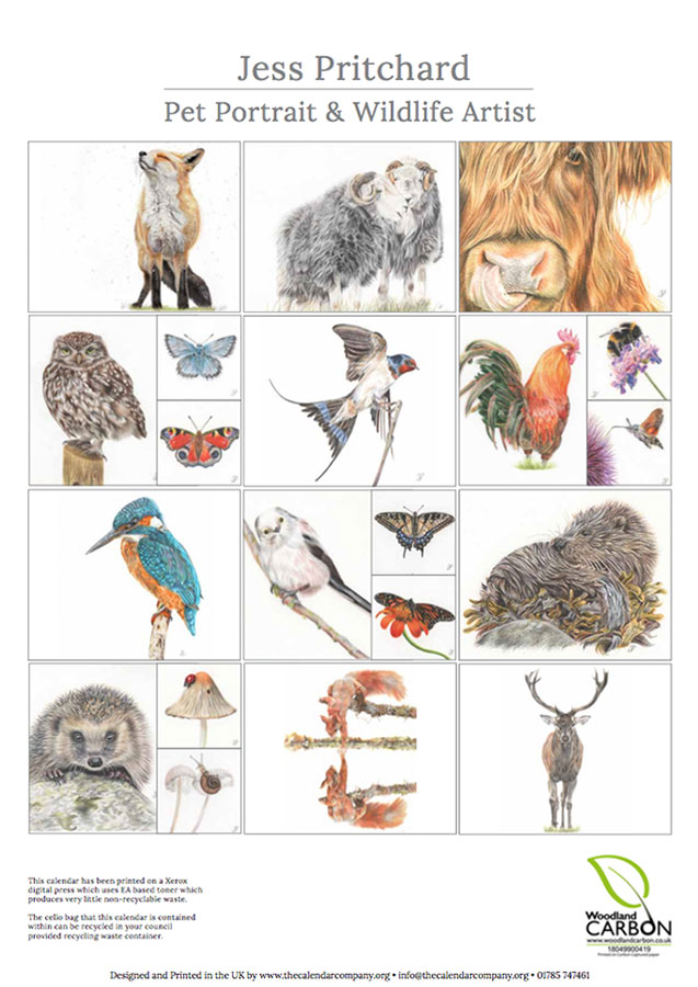 2020 British Wildlife Wall Calendar thumbnail 4