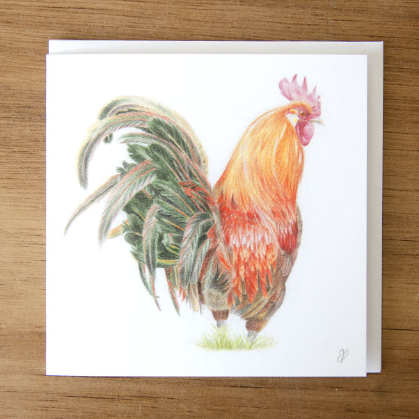 British Wildlife - Cockerel Greeting Card