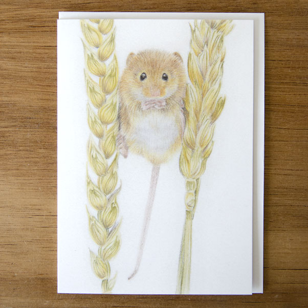 British Wildlife - Field Mouse Greeting Card