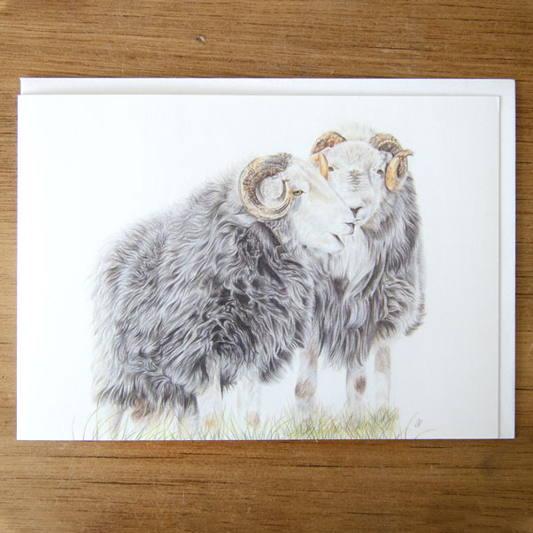 British Wildlife - Herdwicks Greeting Card