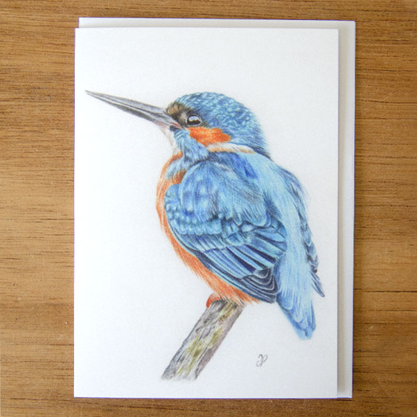 Kingfisher Greeting Card - Preview image  British Wildlife Art