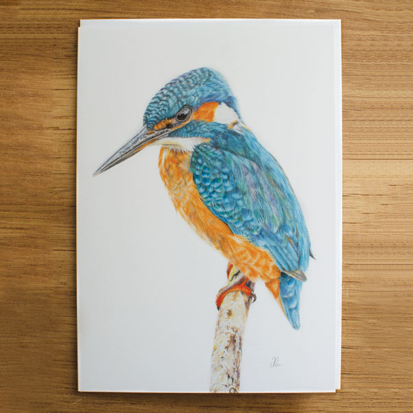 British Wildlife - Little Blue Greeting Card