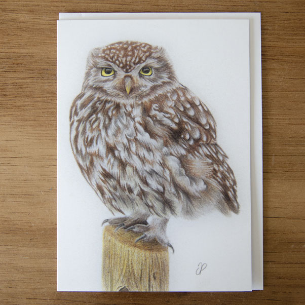 Little Owl Greeting Card - Preview image  British Wildlife Art