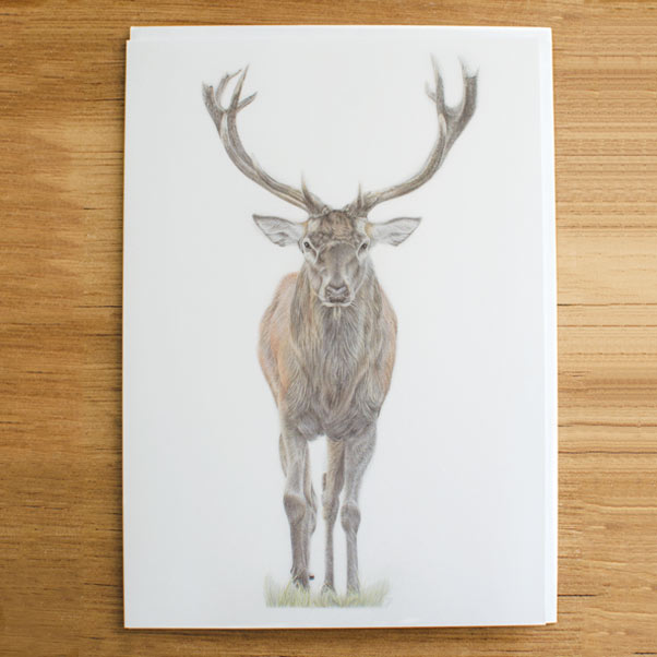 Majesty Greeting Card - Preview image  British Wildlife Art
