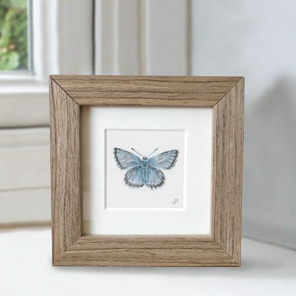 British Wildlife - Chalkhill Blue Butterfly