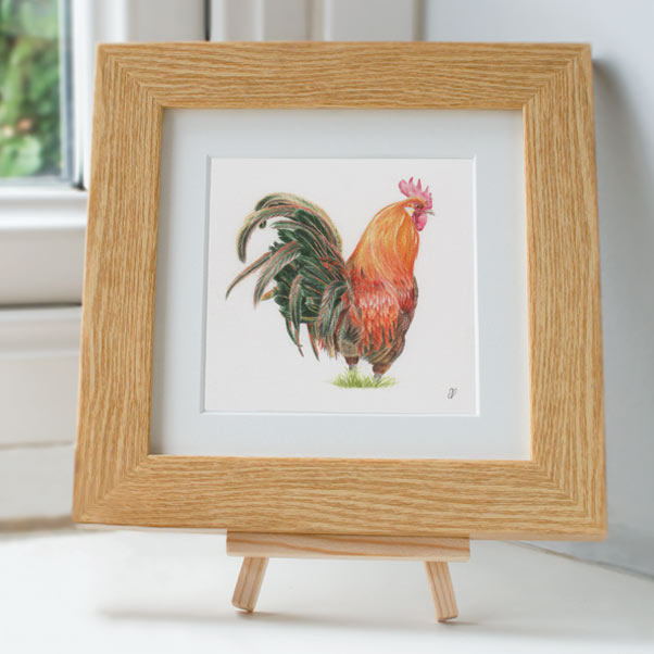 Cockerel - Preview image  British Wildlife Art