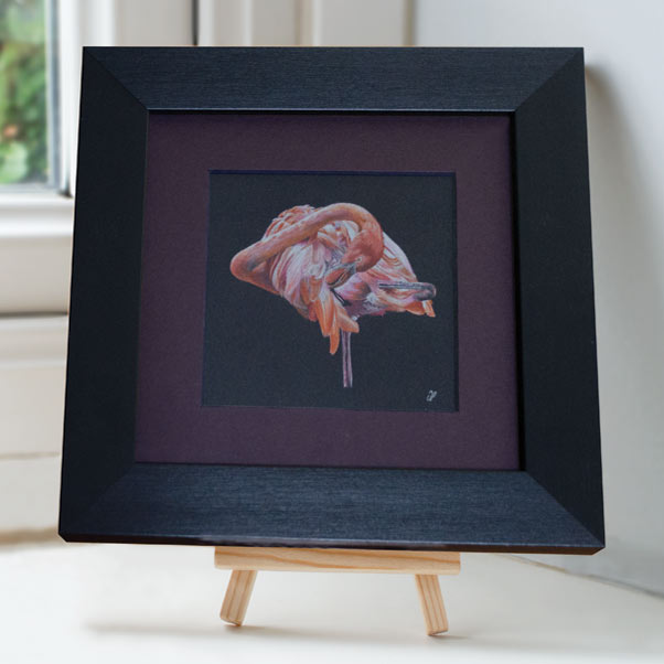 Flamingo - Preview image  British Wildlife Art