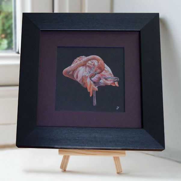 British Wildlife - Flamingo