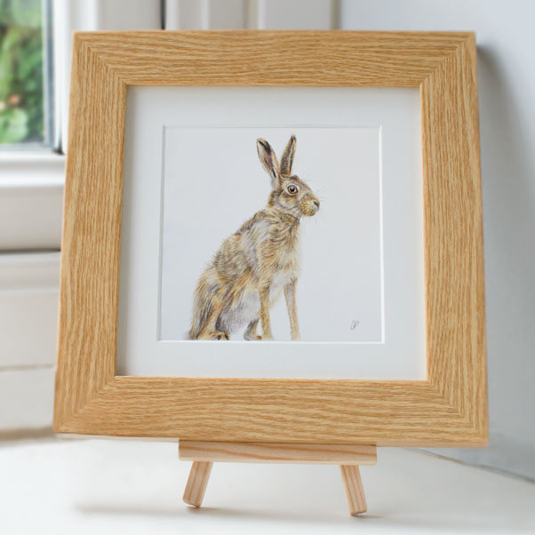 Hare - Preview image  British Wildlife Art
