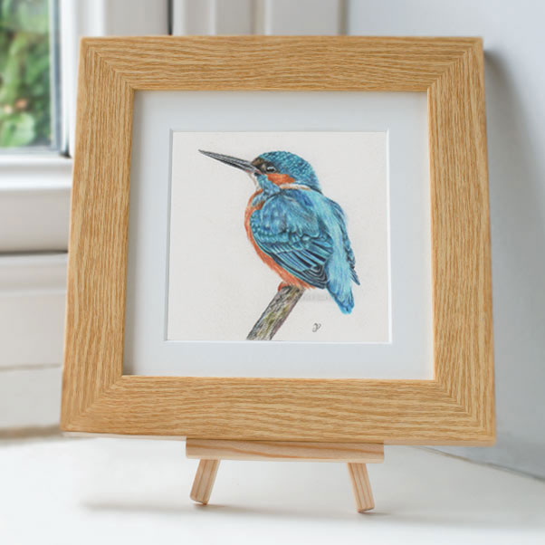 Kingfisher - Preview image  British Wildlife Art