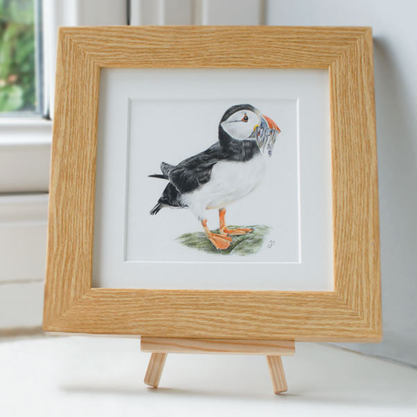 Puffin - Preview image  British Wildlife Art