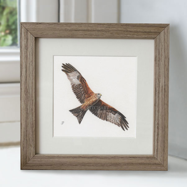Minature collection - Red Kite