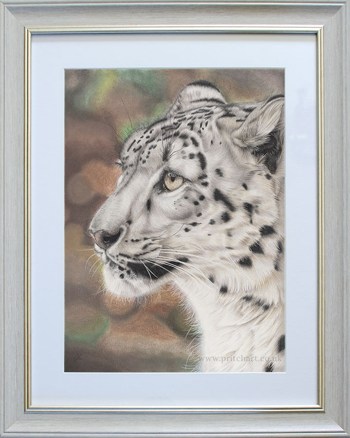 Serenity - Preview image  British Wildlife Art