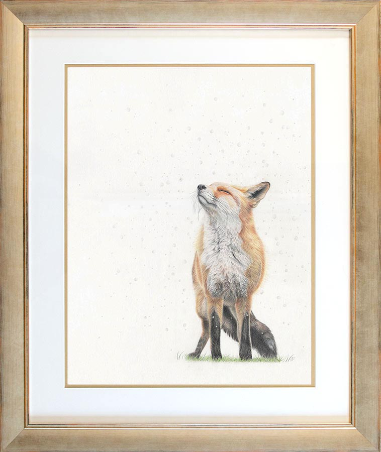 Snowfall - Preview image  British Wildlife Art