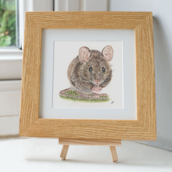 Wood Mouse - Preview image  British Wildlife Art